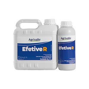 Efetive R